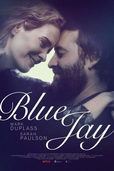 large_blue_jay
