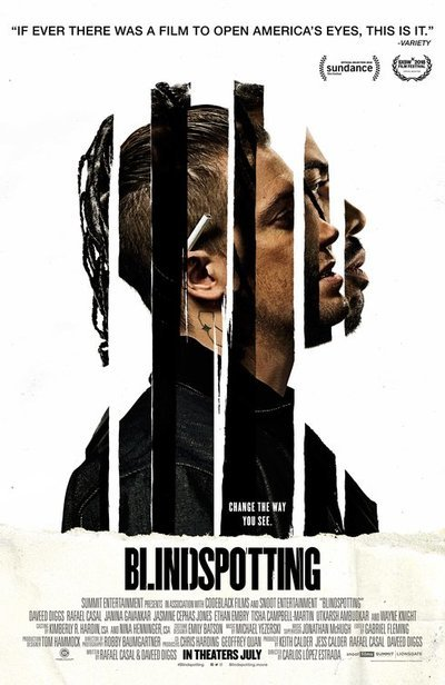 large_blindspotting_ver2